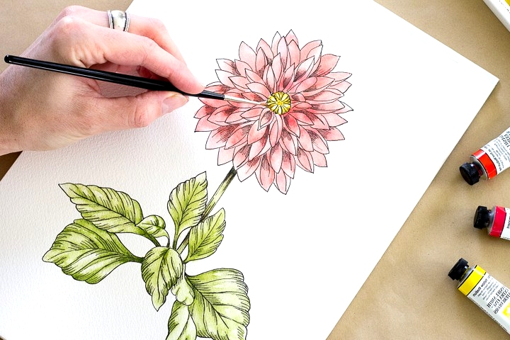 HOW THE DRAW A DAHLIA