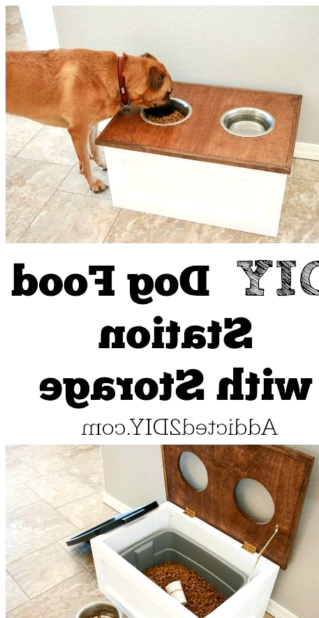 CREATE A DIY DOG DINING STATION WITH STORAGE INCLUDED