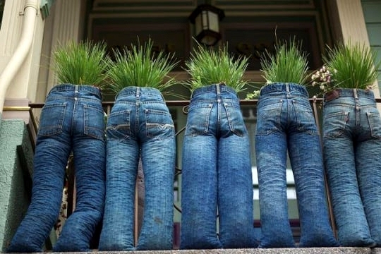 Change Things Up With Denim Jeans as Planters