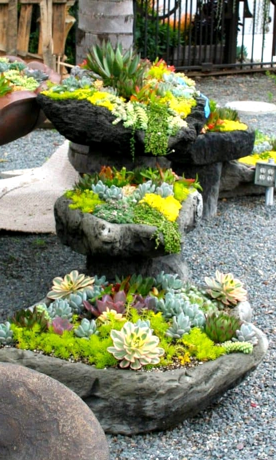Stones Make for Great Succulent Beds