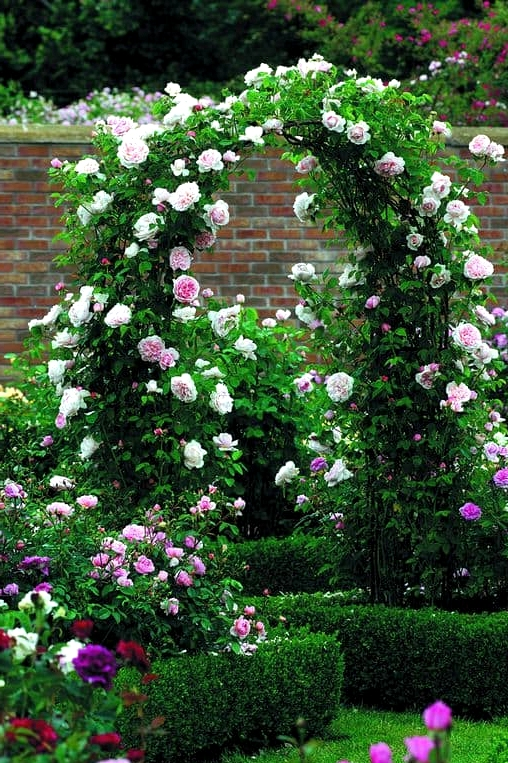 Add a Gorgeous Archway Covered in Plants