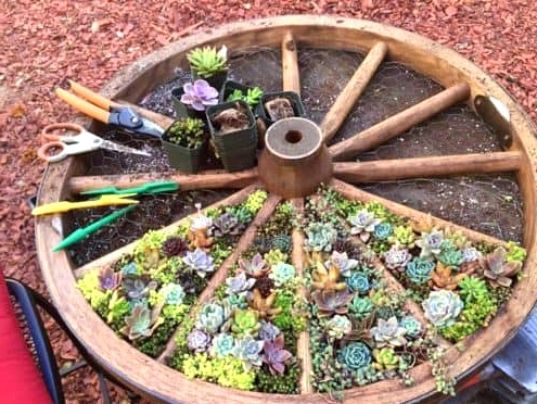 15 Out of the box DIY Planter Ideas For Your Garden
