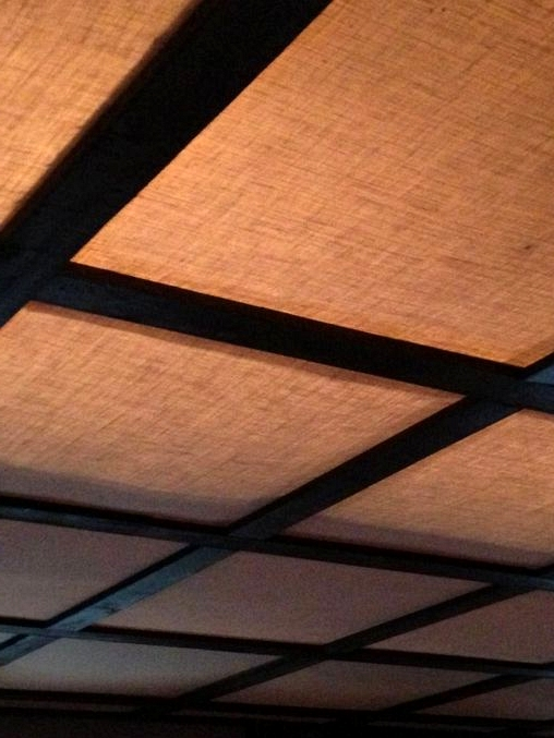 Use Charming Ceiling Tiles