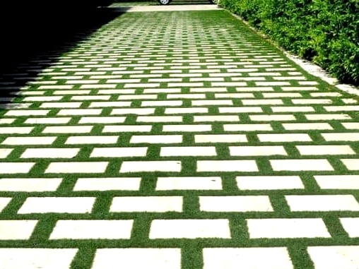 -How-about-a-green-and-grassy-driveway