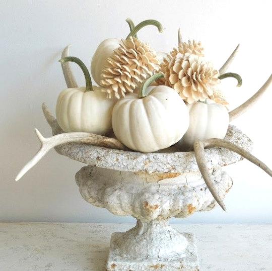 Chic fall decor table centerpiece with white pumpkins pine cones and antlers