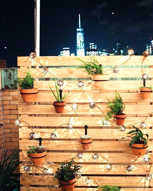 DIY outdoor privacy screen with string lights and hanging plants.