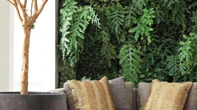 Vertical Backyard at Your Dwelling & Outside