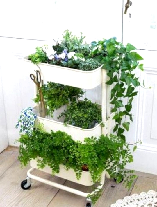 IKEA Hack for happy plants using RASKOG rolling cart