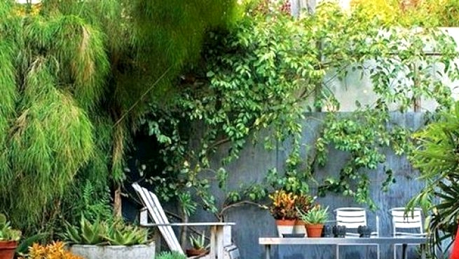 25 Small Backyard Design Concepts On A Finances