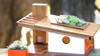 Architecturally Impressed Mid Century Trendy Model Chicken Homes