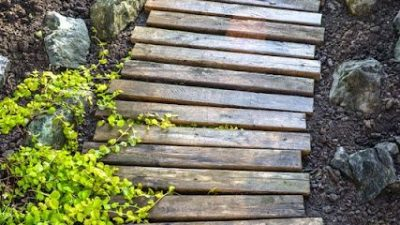 Improved Wood Pallet Walkway
