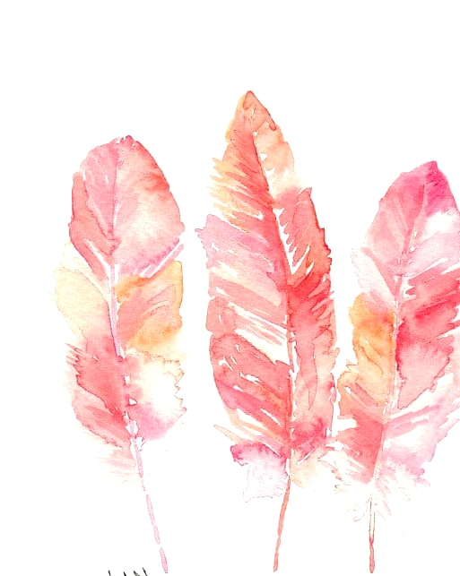 feather watercolor