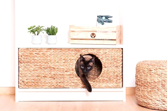 IKEA hacks for pets - Cat hangout fit for an IKEA Billy Bookcase.