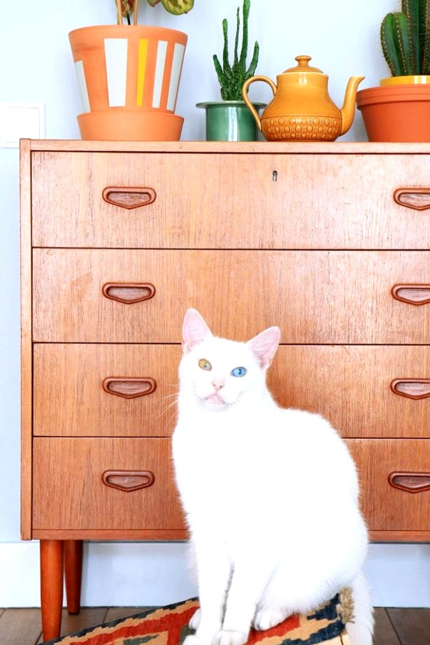 DIY cat scratching board using an IKEA mini rug or door mat. Awesome IKEA hacks for pets