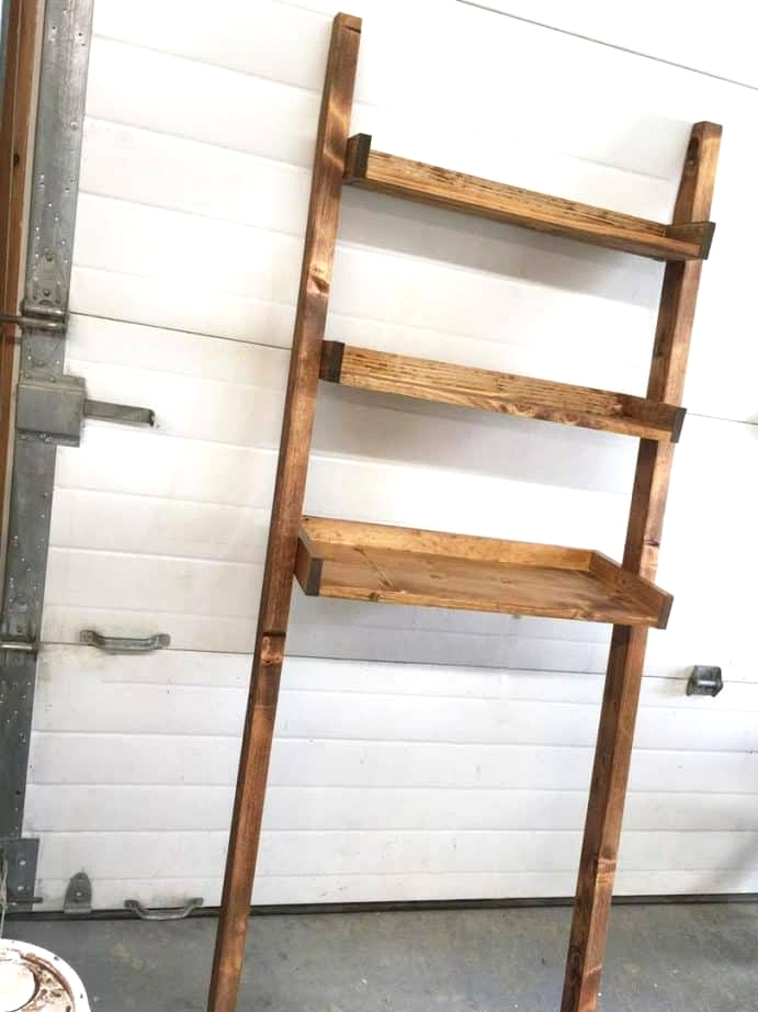 Lean a Rustic Ladder Over the Toilet