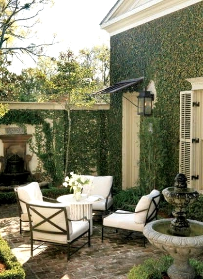 Cover the House in Ivy