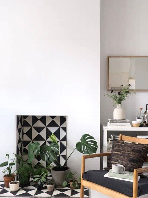 A Fireplace with Plants