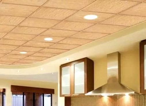 Go Through an Assortment of PVC Ceiling Choices