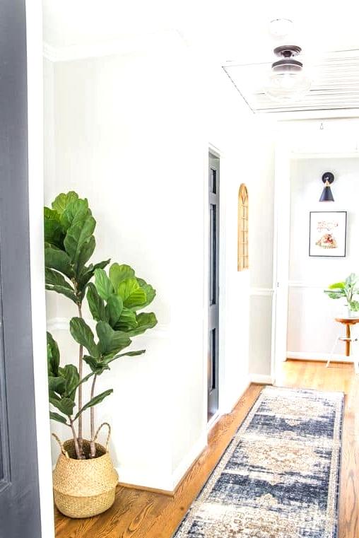Add Greenery Using Houseplants