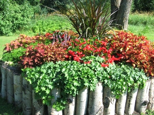Stand Out with a Vertical Wood Log Border
