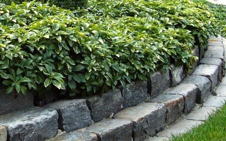 Create Levels of Rough Stone Bricks