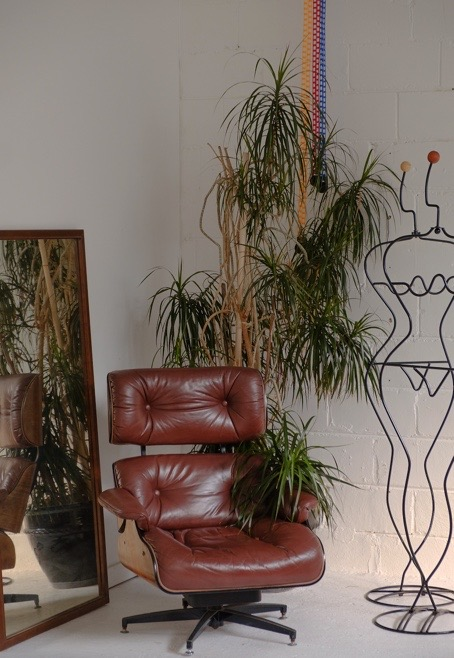 The dragon plant is one of the best indoor houseplants if you're going for a vintage 70's vibe.