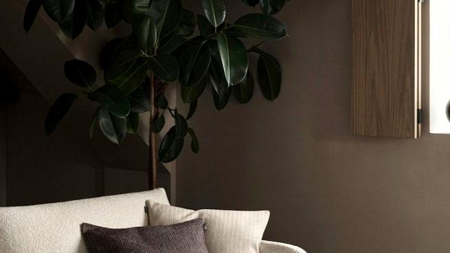 Tender pure minimalism by Linum