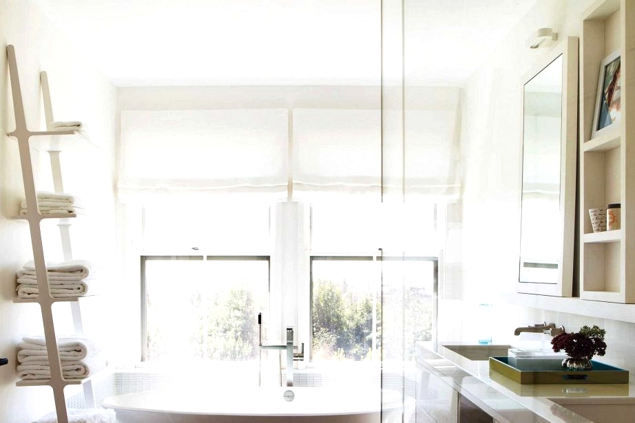 10 Cool Funds-Pleasant Inventive Toilet Storage Concepts