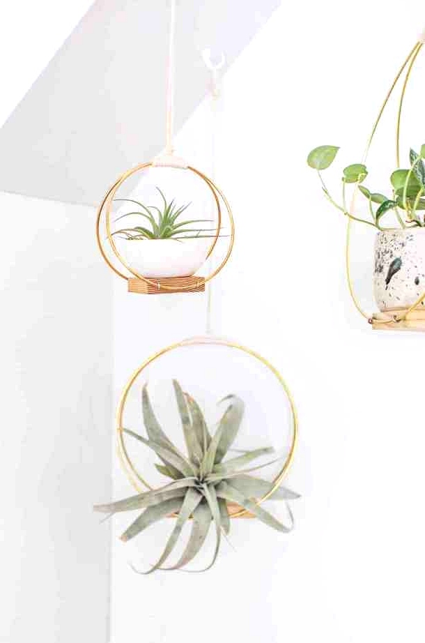 Scrap wood and brass rings make up this easy hanging planter.
