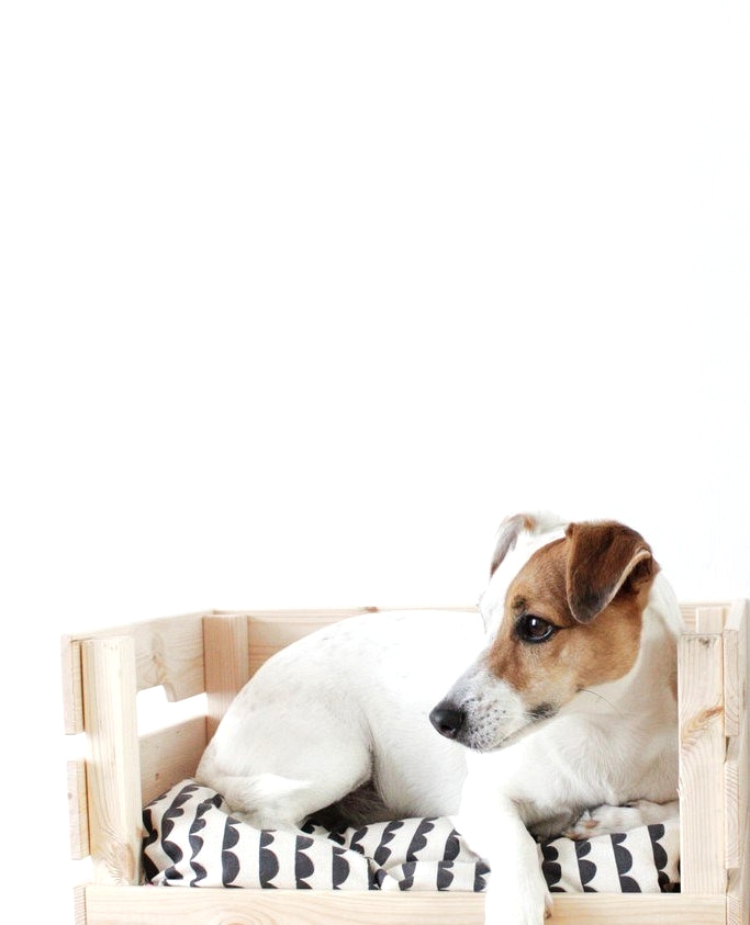 IKEA hack turns a storage crate into a cute dog bed.