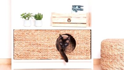 IKEA Hacks Your Pets Will Love
