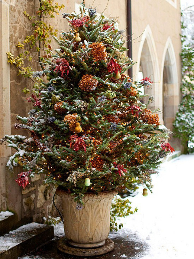 Outdoor Christmas Tree Design Idea