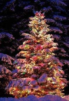 How to Decorate Outdoor for the Holidays